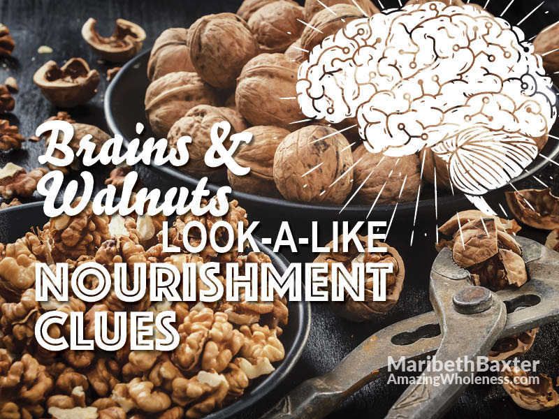 brains and walnuts, look-a-like nourishment clues