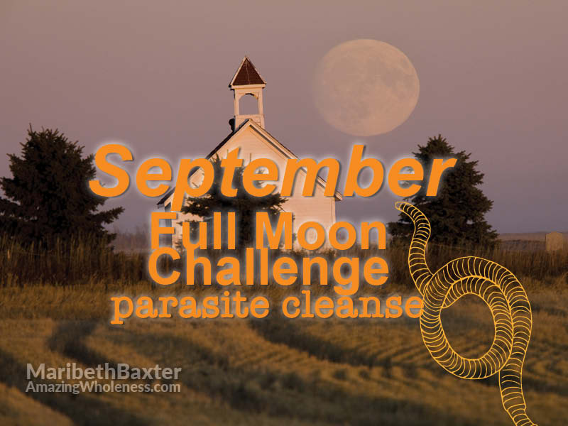 September full moon challenge, parasite cleanse