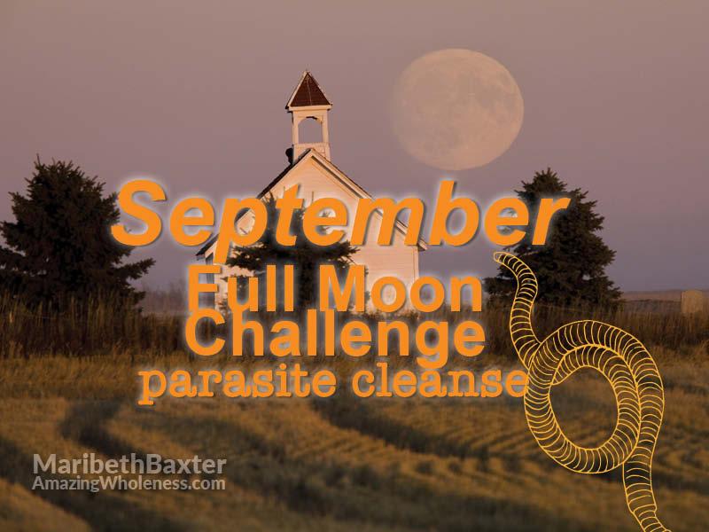 September full moon challenge, parasite cleanse