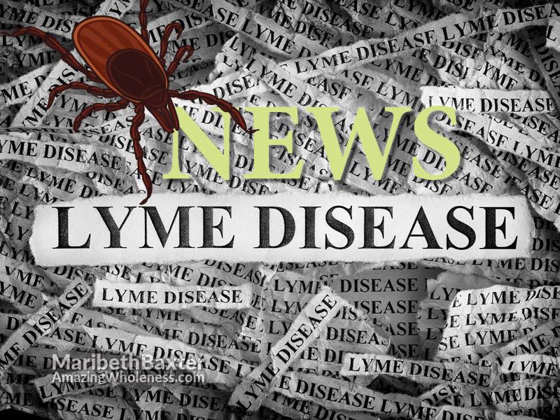 Lyme disease news