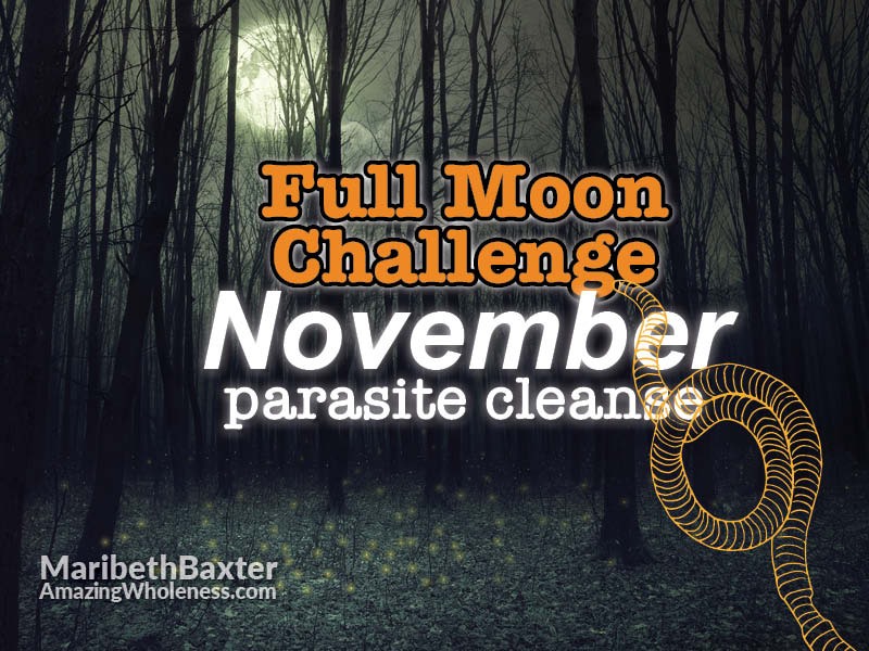 Full Moon challenge, November 2019, parasite cleanse