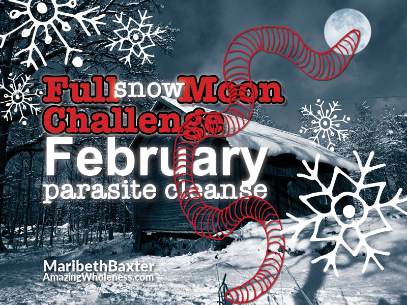 Full Moon Challenge, Parasite Cleanse, February 2020